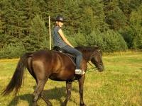 Refreshing equestrian skills