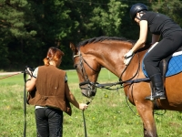Riding lessons and training