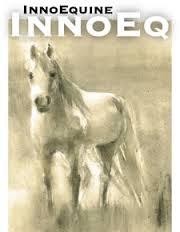 zirgi izjādes
