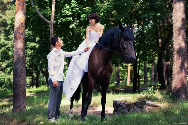 Kāzas un precības kopā ar zirgiem