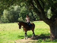"Explore and book this <a href=""http://www.adventureride.eu/en/select-route/"">horseback riding vacation</a>"