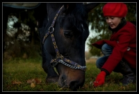 "8.place | Explore and book your <a href=""http://www.adventureride.eu/en/select-route/"">horseback riding vacations</a>"