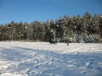"Explore and book your <a href=""http://www.adventureride.eu/en/specials/"">horseback riding vacations</a>"