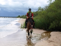 "Beautiful beach on <a href=""http://www.adventureride.eu/en/select-dates/empty_beaches_of_slitere_national_park/"">horseback riding vacation</a> in Slitere national park"