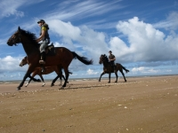 "Freedom! Gallop on the beaches of Slitere National park in <a href=""http://www.adventureride.eu/en/select-dates/empty_beaches_of_slitere_national_park/"">horseback riding vacation</a>"