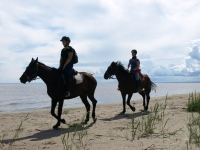 "Take a part of Adventure and explore the beaches on <a href=""http://www.adventureride.eu/en/select-dates/empty_beaches_of_slitere_national_park/"">horseback riding vacation</a>"