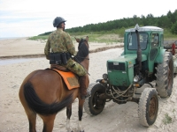 "A surprise on the beach on <a href=""http://www.adventureride.eu/en/select-dates/empty_beaches_of_slitere_national_park/"">horseback riding vacation</a> in Slitere national park"