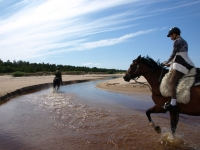 "Sunny day on the beach with horses <a href=""http://www.adventureride.eu/en/select-dates/empty_beaches_of_slitere_national_park/"">horseback riding vacation</a in Slitere national park"