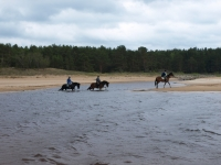 "Crossing the rivers on beach on <a href=""http://www.adventureride.eu/en/select-dates/through_forests_and_beaches_of_adazi/"">horseback riding vacation</a> in Lilaste nature park"