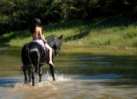 "Excited about the warm and sunny day in the river on <a href=""http://www.adventureride.eu/en/select-dates/through_the_rivers_of_gauja_national_park/"">horseback riding vacation</a> in Gauja national park"