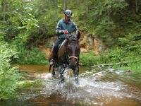 "Wilderness and play on <a href=""http://www.adventureride.eu/en/select-dates/through_the_rivers_of_gauja_national_park/"">horseback riding vacation</a> in Gauja national park"