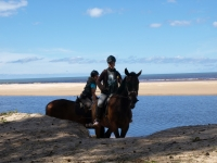 "Sun, beach, horses... sounds like <a href=""http://www.adventureride.eu/en/select-dates/empty_beaches_of_slitere_national_park/"">horseback riding vacation</a> in Slitere National park"