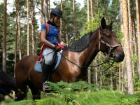 "Be the part of Adventure and book this <a href=""http://www.adventureride.eu/en/select-dates/empty_beaches_of_slitere_national_park/"">horseback riding vacation</a> in Slitere national park"