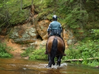 """Take a part of Adventure and book this <a href=""""http://www.adventureride.eu/en/select-dates/through_the_rivers_of_gauja_national_park/"""">horseback riding vacation</a> in Gauja national park"""