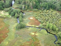 """Explore and book this <a href=""""http://www.adventureride.eu/en/select-dates/through_the_rivers_of_gauja_national_park/"""">horseback riding vacation</a> in Gauja national park"""