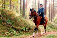 "Explore and book <a href=""http://www.adventureride.eu/en/select-dates/through_forests_and_beaches_of_adazi/"">horseback riding vacations</a> in Lilaste nature park"