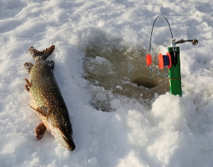 Outdoor guide ice fishing
