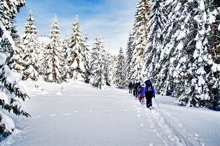 Outdoor guide cross country ski tour